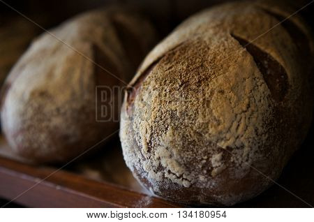 Loafs of rustic freshly baked sour dough bread