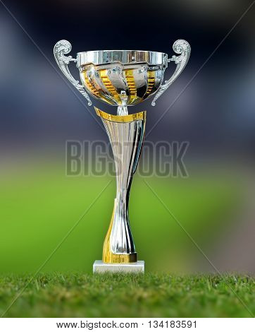 Golden Trophy In Grass