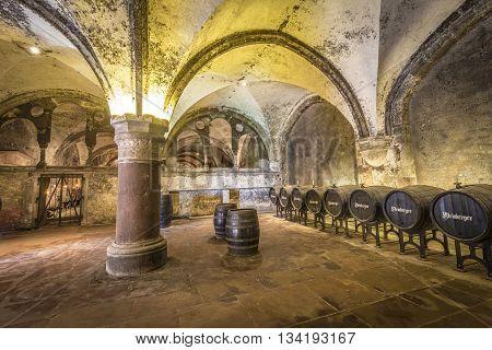Old Vinery In Eberbach