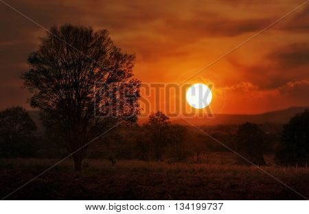 Dreamy Sunset Or Twilight At Mountain And Tree View, Landscape Dreamy Fantasy Scenery View Sunset In