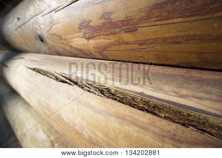a wall of dark wood planks, photo
