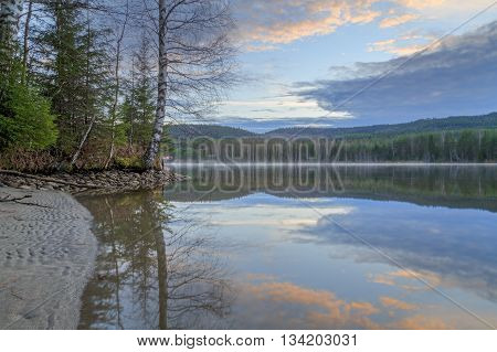 river with tree and reflection in water