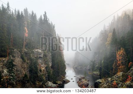 river and forest mountain landscape with mist