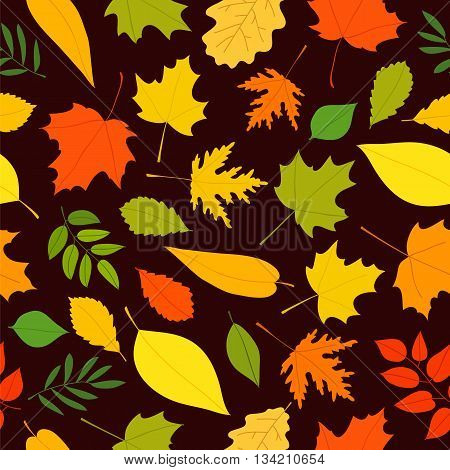 Seamless vector pattern of different autumn leaves on a brown background. Elements for autumn design. Golden autumn. Beautiful autumn background.