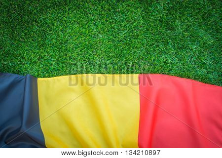 Flags of Belgium on green grass