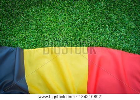 Flags of Belgium on green grass