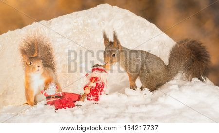 red squirrels with a santa and christmas object in snow