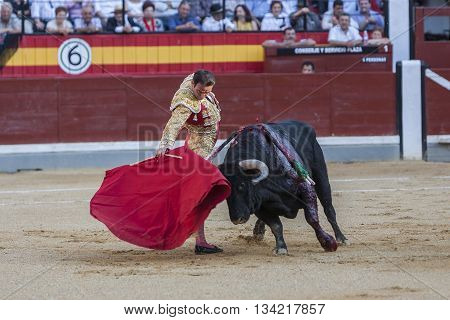 Jaen Spain - October 18 2010: The Spanish Bullfighter Enrique Ponce bullfighting with the crutch in the Bullring of Jaen Spain