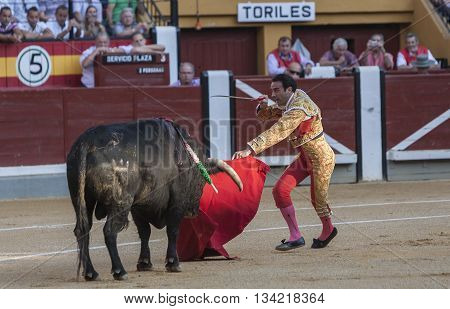 Jaen Spain - October 18 2010: The Spanish Bullfighter Enrique Ponce prepares to kill a bull with his sword inthe Bullring of Jaen Spain