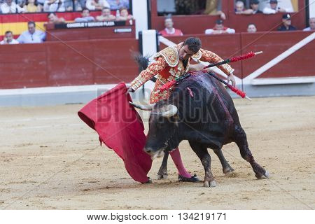 Jaen Spain - October 18 2010: The Spanish Bullfighter El Fandi bullfighting with the crutch in the Bullring of Jaen Spain