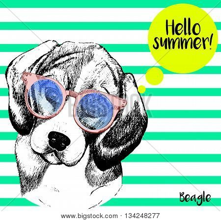 Vector close up portrait of beagle dog wearing the sunglassess. Bright hello summer beagle portrait. Hand drawn domestic pet dog illustration. Isolated on background with mint green strips.