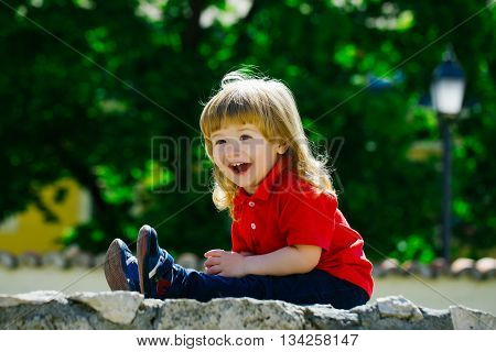 Little Boy On The Stone Fence