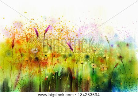 Abstract watercolor painting purple cosmos flower violet lavender white orange wildflower. Wild flowers meadow green field paintings. Hand painted floral in meadows. Spring field nature background