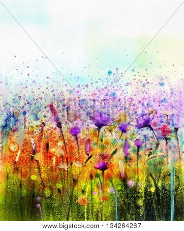 Abstract watercolor painting purple cosmos flowercornflower violet lavender white and orange wildflower. Wild flowers meadow green field paintings. Hand paint floral in meadows. Spring background