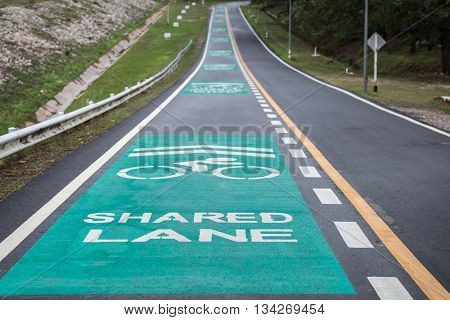 Green Bicycle Lanes On The Asphalt Road