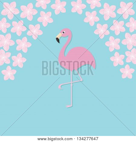 Pink flamingo on one leg. Exotic tropical bird. Zoo animal collection. Cute cartoon character. Sakura flowers Cherry blossom Decoration element. Flat design. Blue background. Isolated. Vector