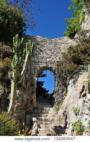 Eze France - april 19 2016 : the botanical garden