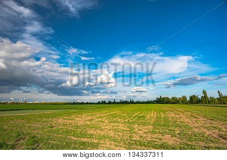 field of green and fresh salad and idustrial background in Germany