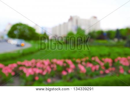 Blurred background: city park flowerbed with tulips