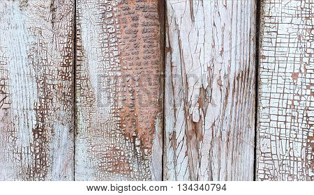 The walls are made of wooden planks with traces of paint. The texture of the wooden planks as a background with a copy of the space
