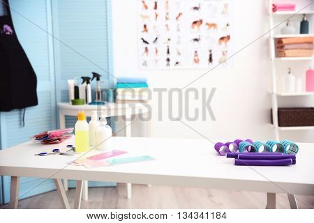 Stylish groomer interior