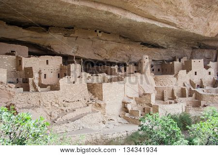 Cliff Palace, Ancient Puebloan Village Of Houses And Dwellings In Mesa Verde National Park, New Mexi