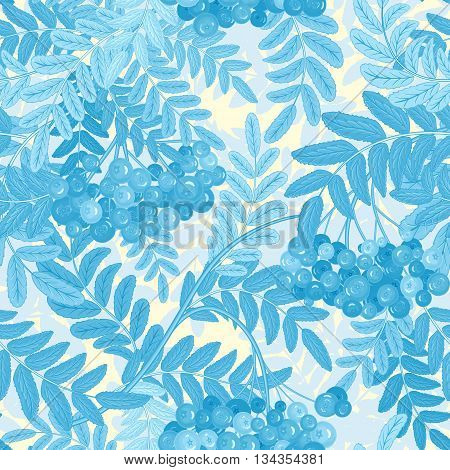 Vector seamless pattern with berries. Blue Rowanberries on a white Background