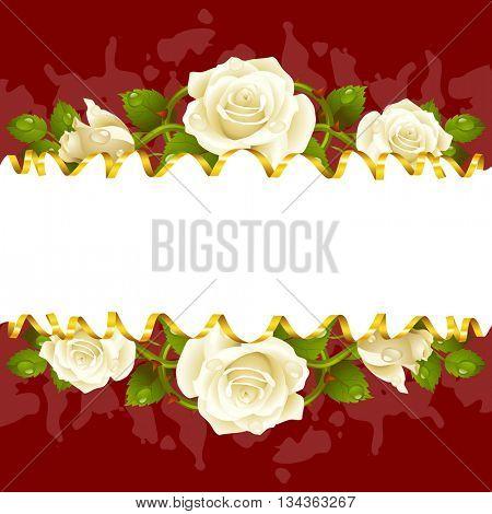 Vector horizontal frame whith white roses and golden ribbon