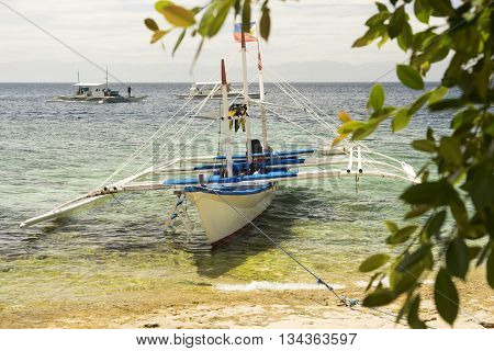 Diving boats with philippine flag on the surface of tropical sea behind  leaves
