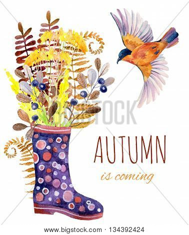 Watercolor polka dot rubber boots with meadow herbs and bird. Hand painted autumn illustration with gumboots blackthorn branches fern and field flowers