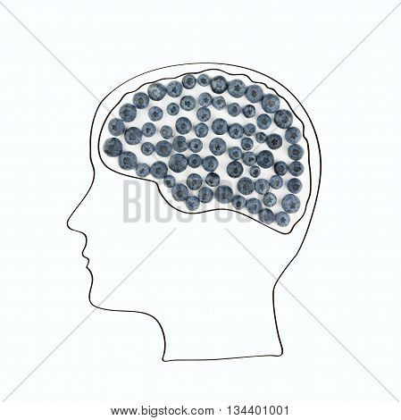 The human brain is laid out from the berries healthy lifestyle.