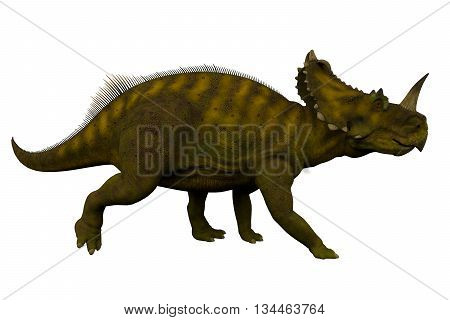 Centrosaurus Side Profile 3D Illustration - Centrosaurus was a herbivorous ceratopsian dinosaur that lived in Canada during the Cretaceous Period.