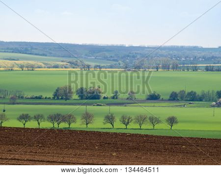 Agricultural rural landscape with tree lines and plowed ground