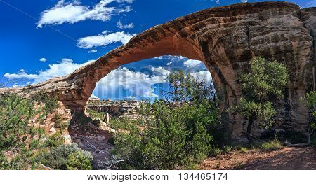 Owachomo Bridge In Natural Bridges National Monument, Utah,  Usa