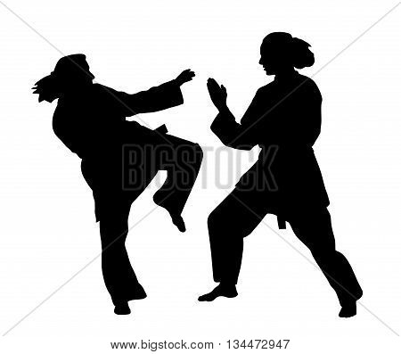 Women karate fight. Isolated white background. EPS file available.