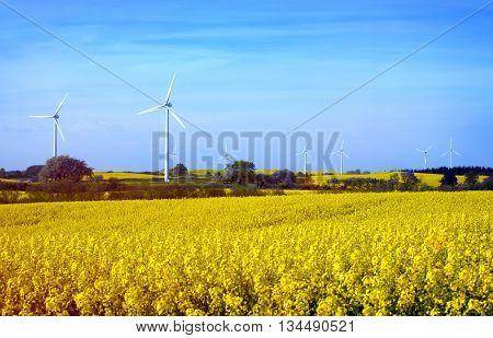 Row of wind turbines in Sweden