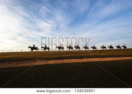 Race horses riders morning training silhouetted sky blue landscape.