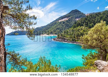 Summer vacation background with turquoise sea water bay and pine trees in greek Thassos Island, Greece