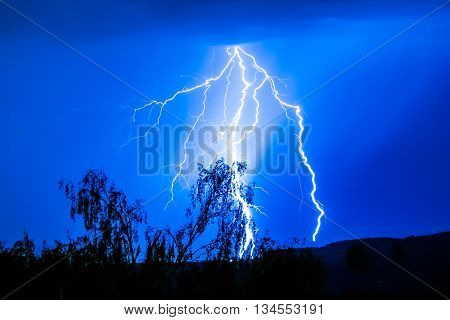 Thunderbolt with a striking lightning and tree in blue sky