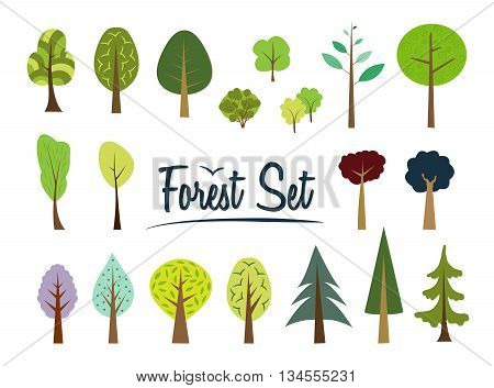 Vector forest set. Various trees and bushes colorful wood cartoons flat style. Fir, pine, spruce, larch. Conifers and deciduous. Different simple trees and shrubs on white background.