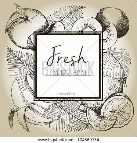 Vector border illustration of fresh tropical fruits with palm leaves. Hand drawn vintage set of vegetarian tasty organic food with white square text template isolated on craft brown background.