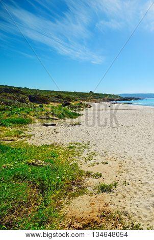 white sand in Le Bombarde beach Italy