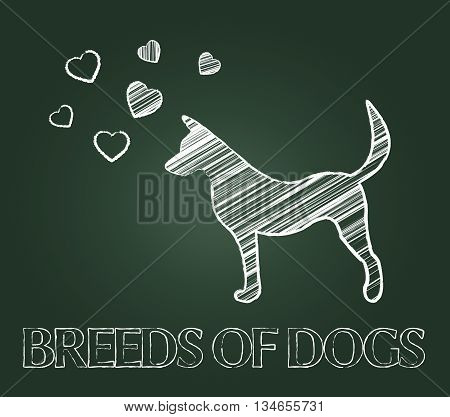 Breeds Of Dogs Indicates Canine Reproduce And Pet