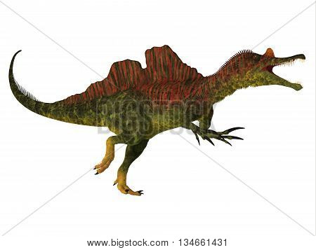 Ichthyovenator Dinosaur Body 3D Illustration - Ichthyovenator was a theropod spinosaur dinosaur that lived in Laos Asia in the Cretaceous Period.
