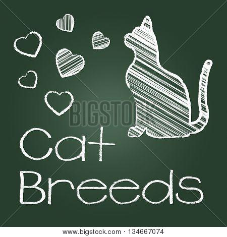 Cat Breeds Represents Pedigree Kitty And Reproducing