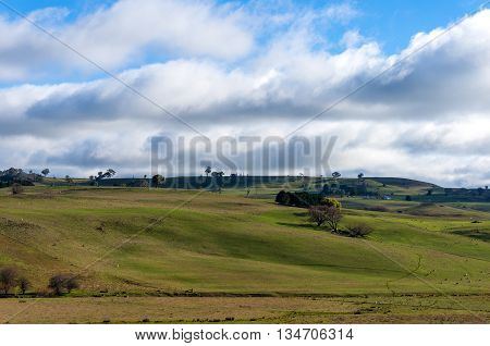 Australian beautiful summer rural landscape. Green grass hill outback pasture against blue sky. Copy space