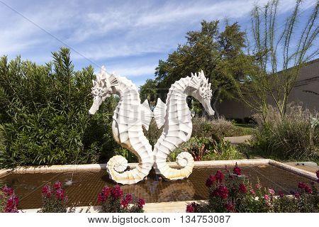DALLAS USA - APR 8: Sea Horse Statue at the Leonhardt Lagoon of the Fair Park in Dallas. April 8 2016 in Dallas Texas United States