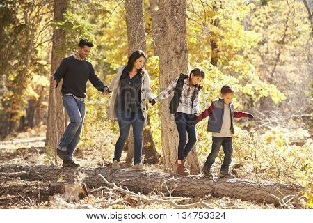 Happy family hold hands balancing on fallen tree in a forest