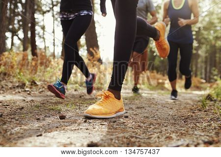 Legs and shoes of four young adults running in forest, crop