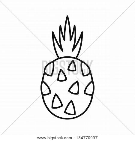 Pitaya, dragon fruit icon in outline style isolated on white background